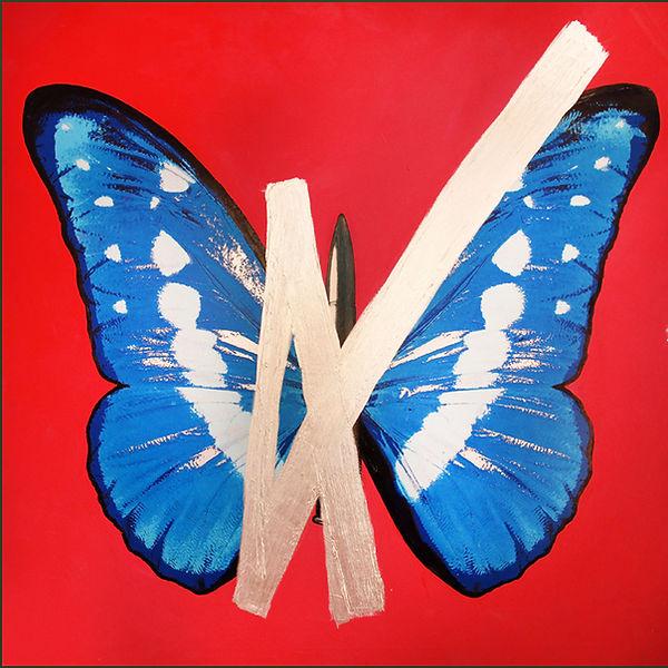ButterflyOnRedwithTransparentYellowCross