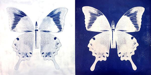 SilverButterflies.JPG