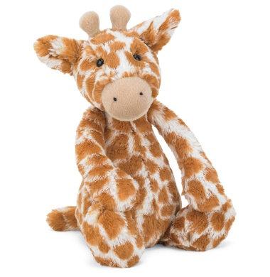 Bashful Giraffe