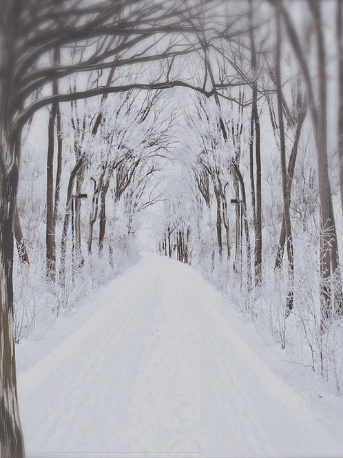 Snowy Path Digital Background