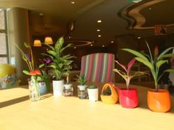 辦公室盆栽