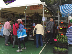 香港花卉展覽參展商