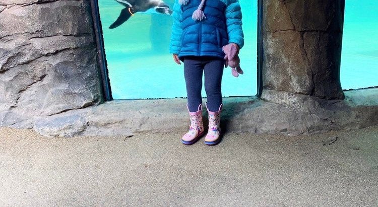 Top things to do with kids in Cornwall