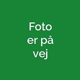 foto paa vej.png