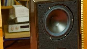 Wilson Audio SASHA W/P 1