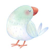 bird_single.jpg