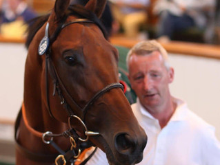 Shergar Cup double for Norris Bloodstock
