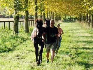 Destination Deauville as yearling season kicks off