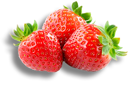 sun-belle-berries-strawberries-mobile-50