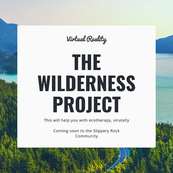 The wilderness project.png