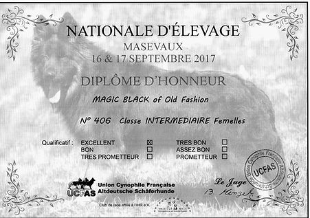 DIPLOME Masevaux