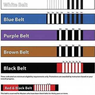 Adult Belt System.jpeg