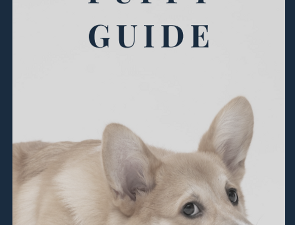 THE Puppy Survival Guide!