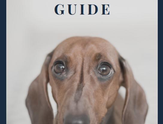 The Enrichment Guide