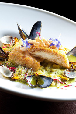 Photo food culinaire gastronomique