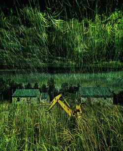 «Paysage en herbe»