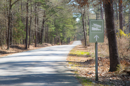 031818 - Lincoln Co GA Hesters Ferry Campground - 41.jpg