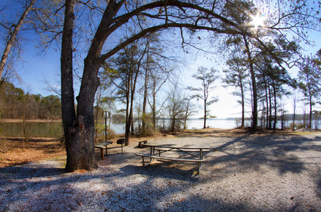 031818 - Lincoln Co GA Hesters Ferry Campground - 9.jpg