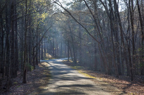 031518 - Lincoln Co GA Hesters Ferry Campground - 25.jpg