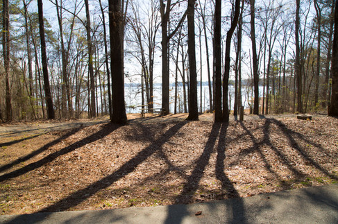 031818 - Lincoln Co GA Hesters Ferry Campground - 26.jpg