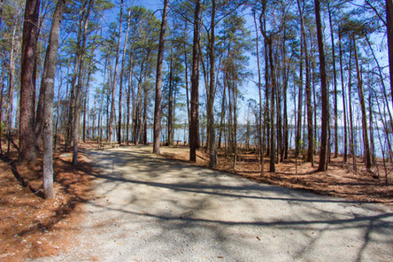 031818 - Lincoln Co GA Hesters Ferry Campground - 19.jpg