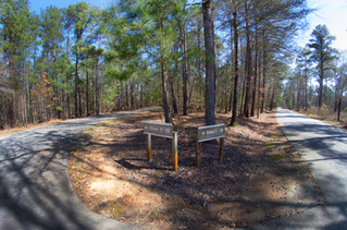 031818 - Lincoln Co GA Hesters Ferry Campground - 12.jpg