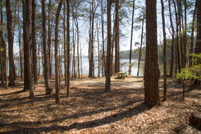 031818 - Lincoln Co GA Hesters Ferry Campground - 50.jpg