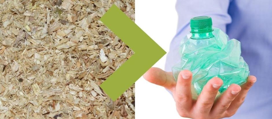 Bioplástico basado en madera que se degrada por completo en tres meses