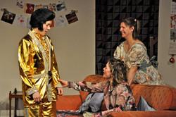 Elvis-the golden years