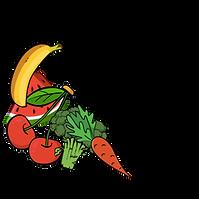 TF Logo1.png