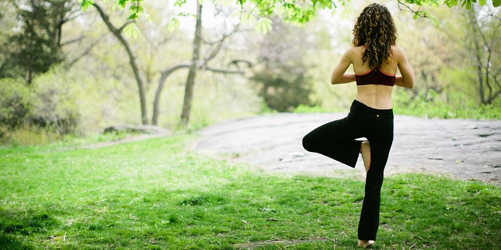 Yoga Health Journey (November-February)