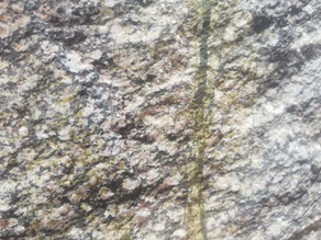 Epidote veinlets in igneous rock