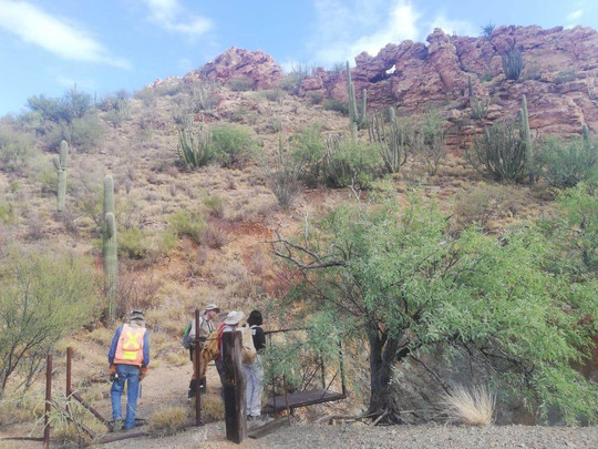 Geologists inspecting supergene argillic alteration