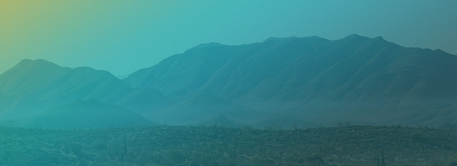 Mojave-Header_INVESTORS.jpg