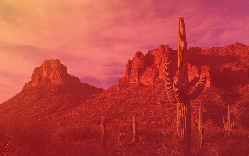 Mojave-Header_V1.jpg