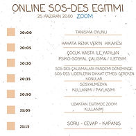Online SOSDES (Psiko-Sosyal Destek) Eğitimi
