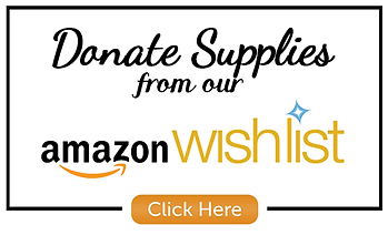Amazon Wish List donate button.png