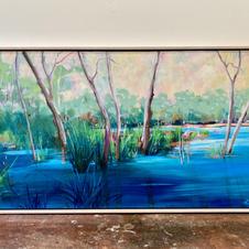 Lagoon at Wonga Wetlands
