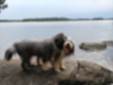 H ja H rantakalliolla.jpg