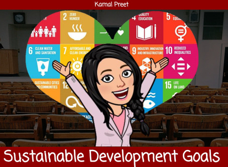 The Importance of the SDGs in Education