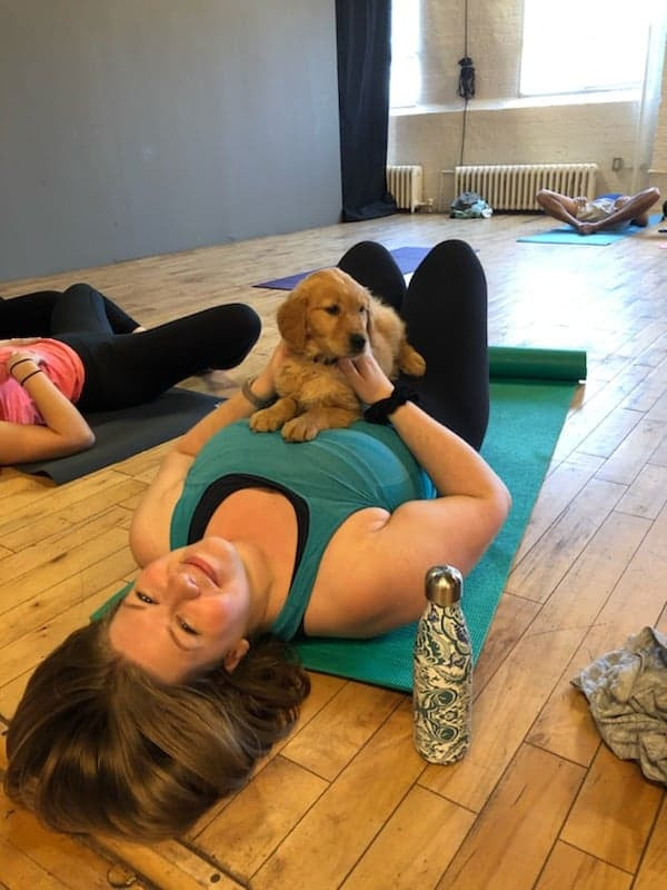 Puppy Yoga5.jpg