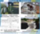Email slide Scan & Model.jpg