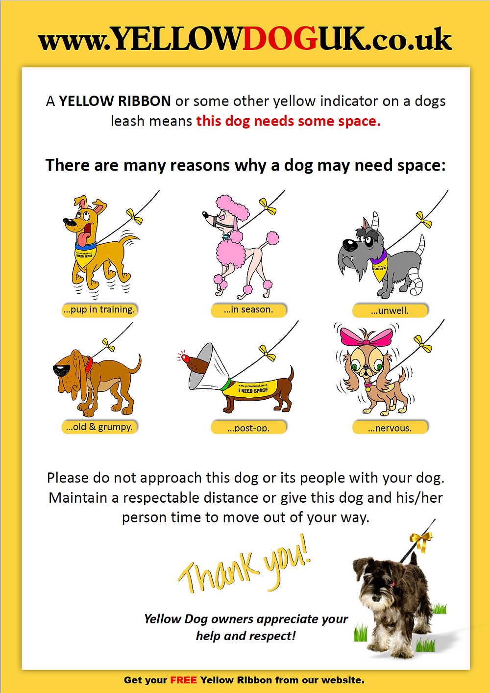 https://www.yellowdoguk.co.uk/images/PDFs/Official_Yellow_Dog_UK_poster.pdf