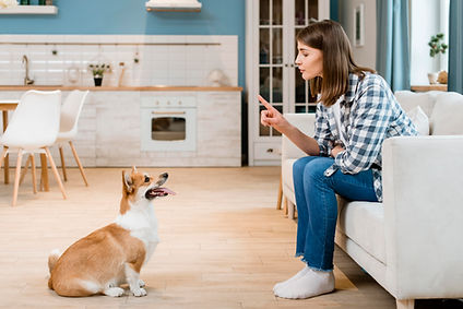 side-view-woman-couch-training-her-dog.j