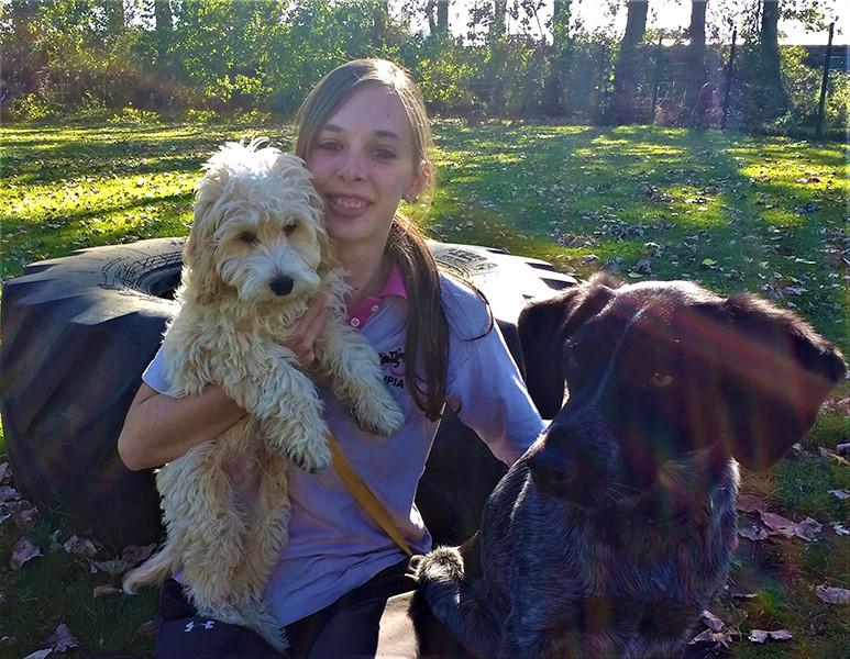 Oakington Dog Day Care Centre - Meghan