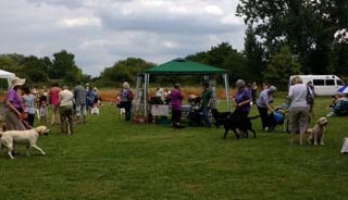 Charity FUN DOG SHOW in aid of Canine Partners
