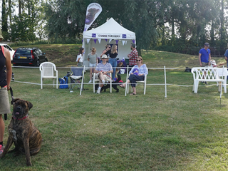 Charity Fun Dog Show at Oakington Dog Day Care!