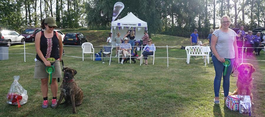 Charity Fun Dog Show Oakington