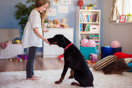 little-girl-playing-with-dog-home.jpg