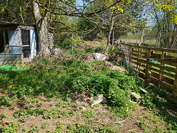 Work has begun on Oakington's new sensory garden for dogs